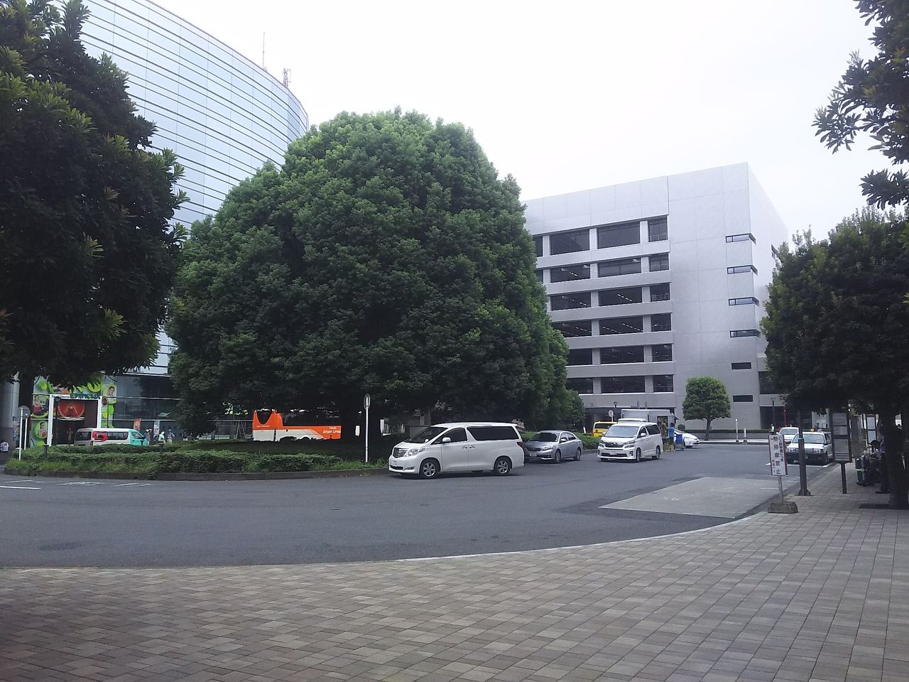 所沢駅東口