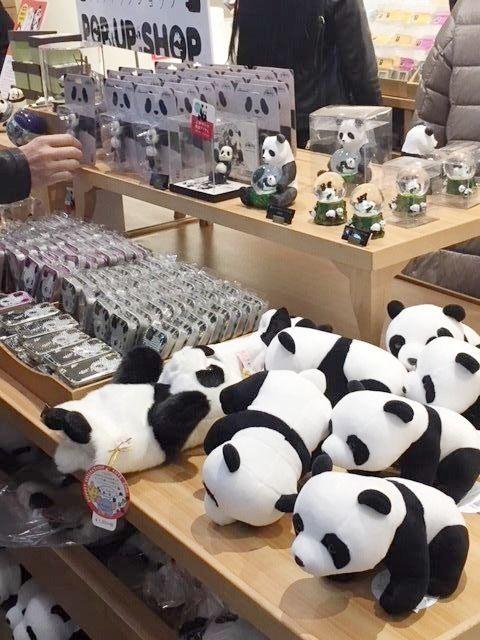 パンダ人気まだまだ続く!北の玄関口『上野駅』