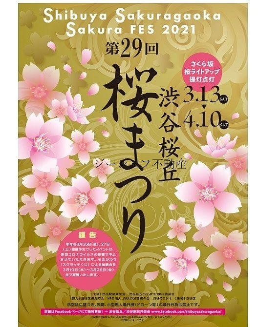 渋谷桜丘 桜まつりパンフレット